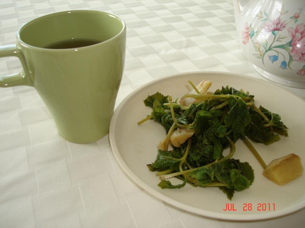 Jamaican mint-ginger tea (2/2)
